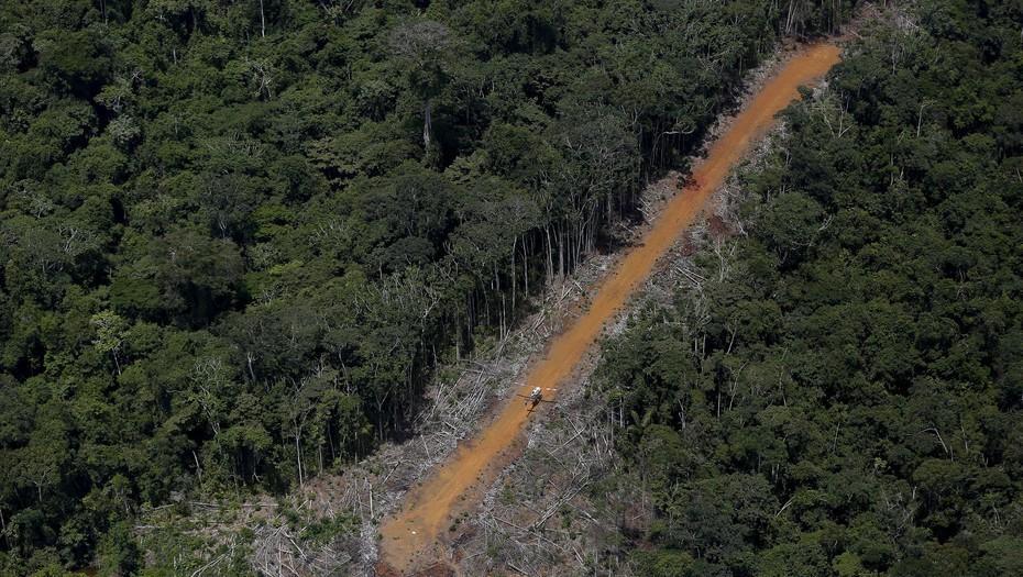 PRONUNCIAMIENTO:FRENTE A LA APERTURA DE MINERIA PRIVADA EN RESERVA AMAZÓNICA EN BRASIL