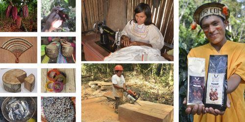 Ucayali: indígenas participarán en negocios sostenibles en bosques