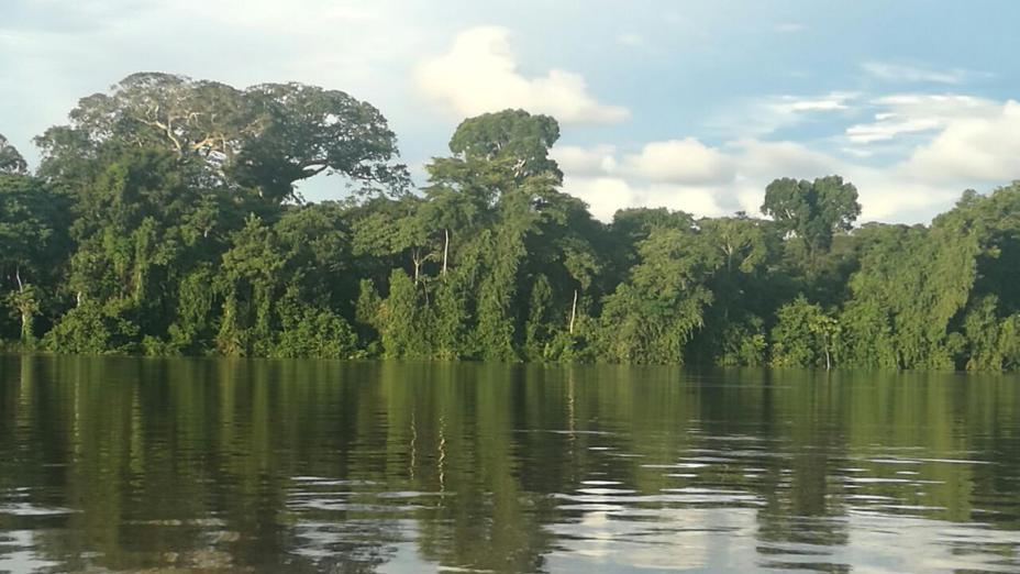Alternativas Indígenas ante agresiones a la Amazonia y los Pueblos Indígenas