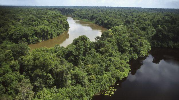Cooperación solidaria que defienda los pueblos y las selvas sin imposiciones, ni neo colonialismo
