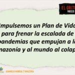 Impulsemos un plan de vida para frenar la escalada de pandemias que empujan a la amazonia y al al mundo al colapso