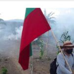 En Colombia, comuneros indígenas del Cauca, que luchan por ver sus territorios libres de cultivos de uso ilícito, fueron atacados por hombres armados.