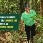 JUECES RECONOCEN PARCIALMENTE EL CUMPLIMIENTO DEL CONVENIO 169 DE LA OIT EN SENTENCIA DE LÍDER INDÍGENA ANTONIO VARGAS