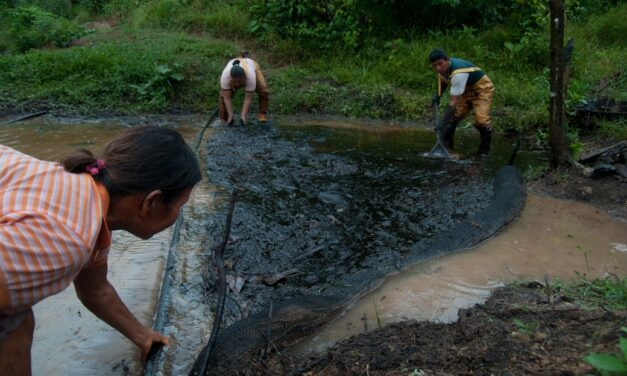 Los bancos que financian la industria petrolera y gasífera en la Amazonía reprueban una evaluación que mide el nivel de cumplimiento de sus compromisos de sustentabilidad y gestión de riesgos