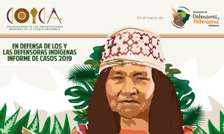 en defensa de los y las defensoras indígenas-informe de casos 2019