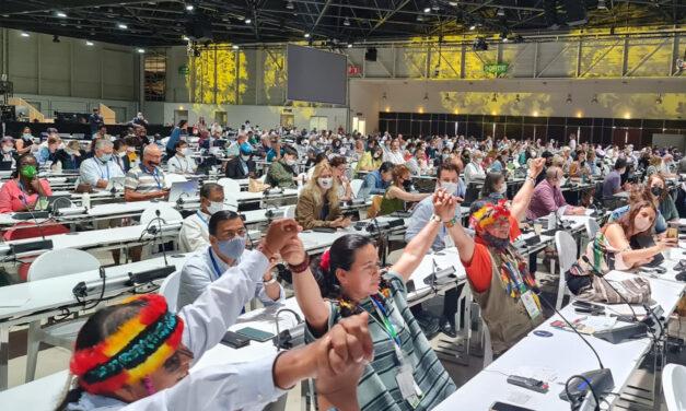 UICN aprueba moción 129: proteger el 80% de la Amazonía al 2025